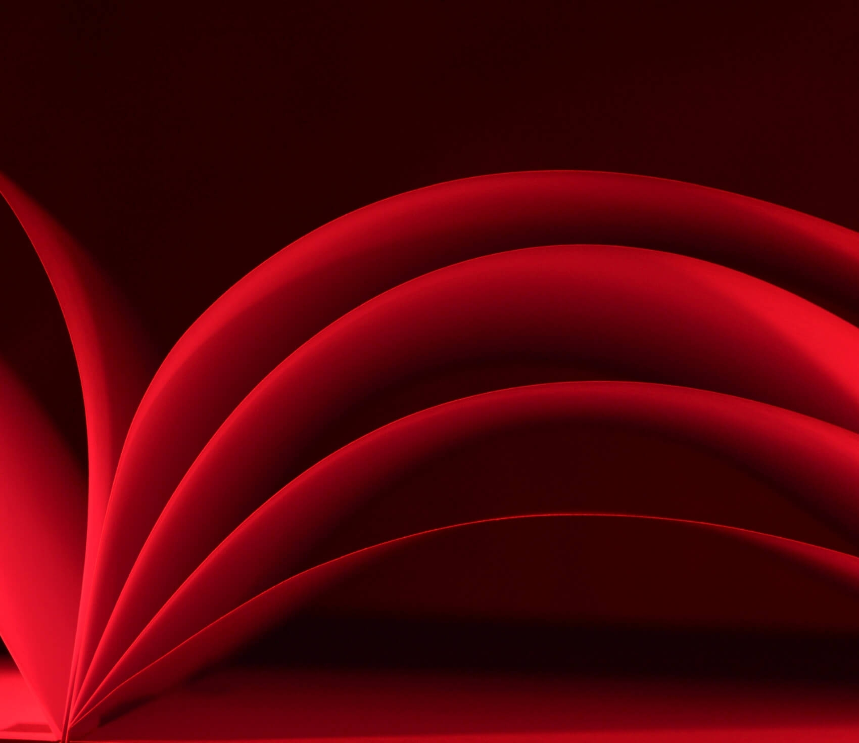 Rotes_Buch_1